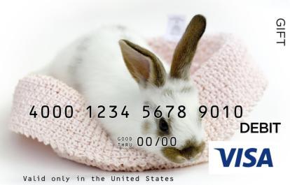 Bunny Visa Gift Card