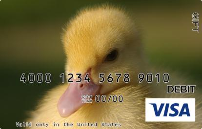 Yellow Duckling Visa Gift Card