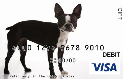 Terrier Visa Gift Card