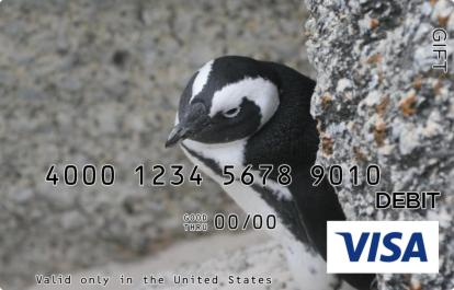 Penguin Visa Gift Card