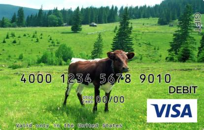 Cow Visa Gift Card