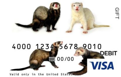 Mongoose Visa Gift Card