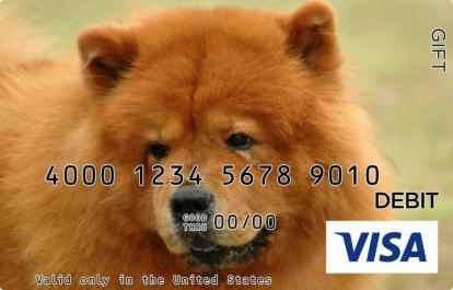Brown Dog Visa Gift Card