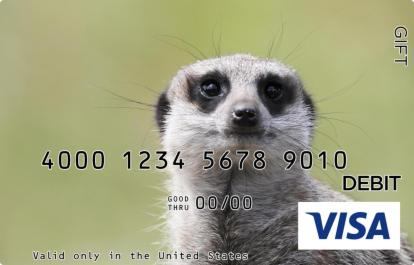 Prairie Dog Visa Gift Card