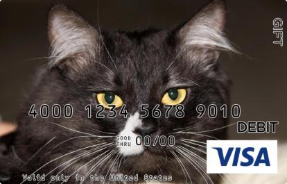 Black Cat Visa Gift Card