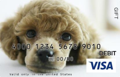 Big-Eyed Puppy Visa Gift Card