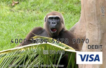 Chimpanzee Visa Gift Card