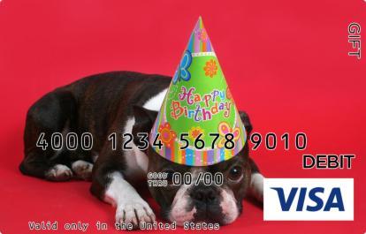 Birthday Pug Visa Gift Card