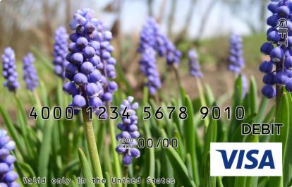 Blooming Bluebonnet Visa Gift Card
