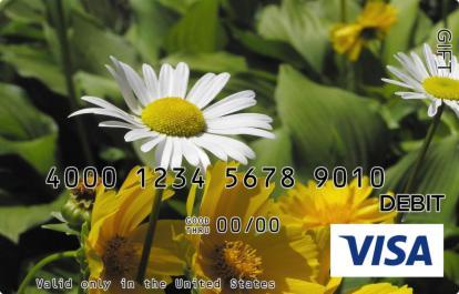 Daisy Visa Gift Card