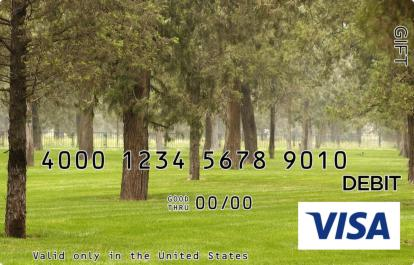 Idyllic Park Visa Gift Card