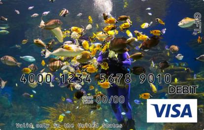 Diving with Fish Visa Gift Card