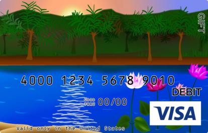 Secret Beach Visa Gift Card