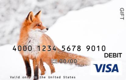 Snow Fox Visa Gift Card