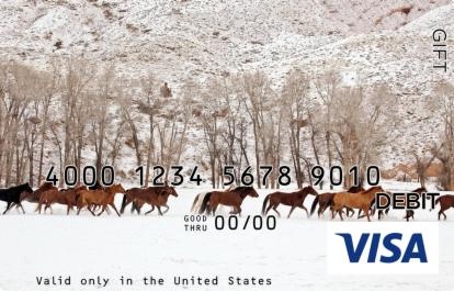 Winter Horses Visa Gift Card