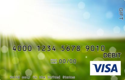 Sun-Bleached Meadow Visa Gift Card