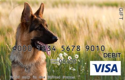 German Shepherd Visa Gift Card