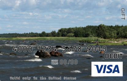 Running Stream Visa Gift Card