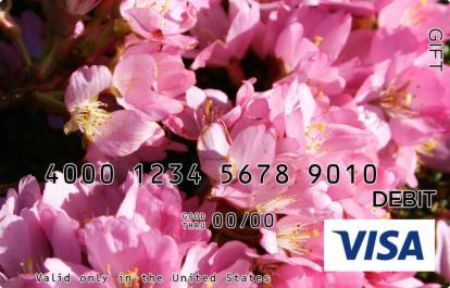 Pink Blossoms Visa Gift Card