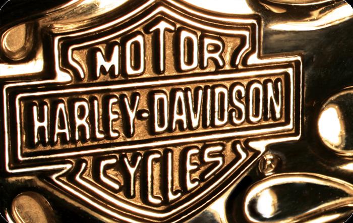 Harley-Davidson™