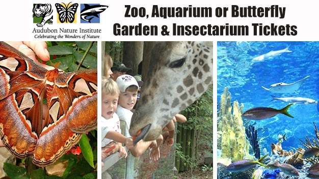 Fun with the Kids at the Zoo, Aquarium or Butterfly Garden and Insectarium