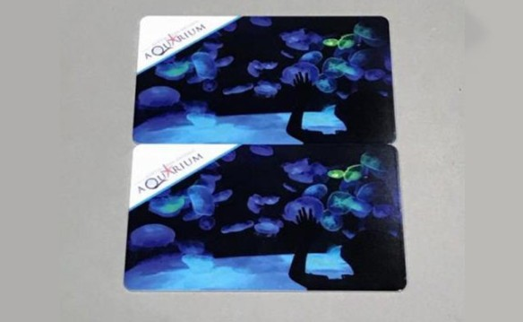 "Austin - (2) $25 Gift Cards to Austin Aquarium ""Sea to Believe"""