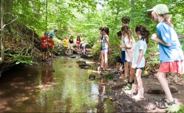 Bucks County Audubon Society Summer Camp (30% Off)