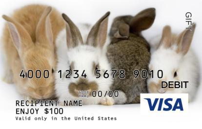 Bunnies Visa Gift Card