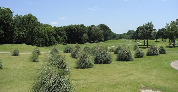 18 Holes at Country View Golf Course for Just Over $1 a Hole!