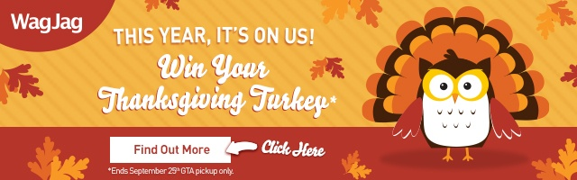 Win your Thanksgiving Turkey! Enter contest here!