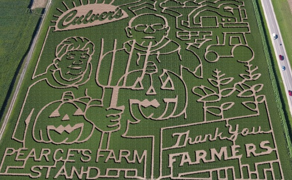 Family Four Pack to Pearce Farms Corn Maze