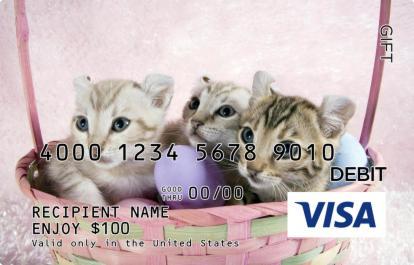 Kittens And Eggs Visa Gift Card