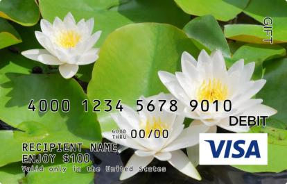 Lily Pads Visa Gift Card