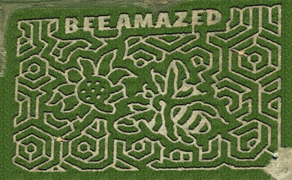 Mid-South Maze September 2017