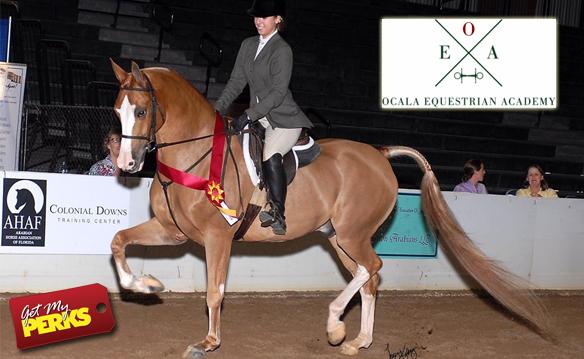 Ocala Equestrian Academy Ladies Night March 2018