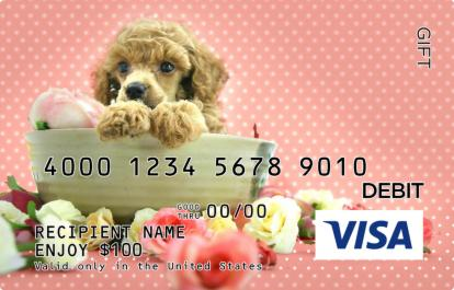 Puppy And Flowers Visa Gift Card