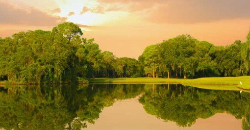 The Highlands Golf Course at The Meadows - Tampa