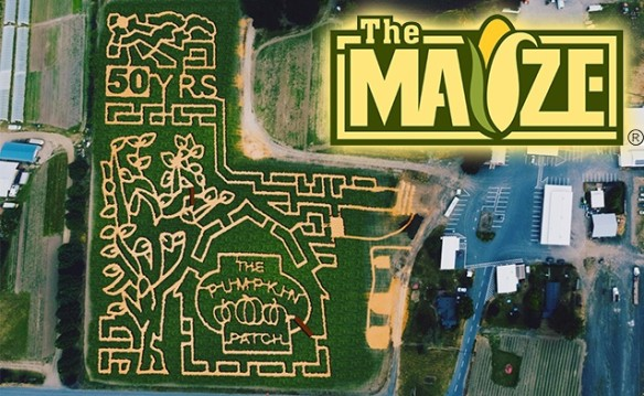 The MAiZE - 2017