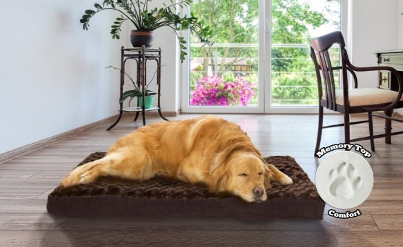 NATIONAL BLOG - NETWORK - Ultra Plush Deluxe Memory Foam Pet Bed