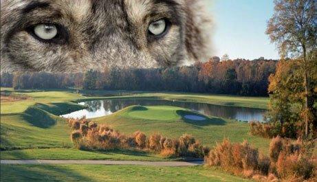 Wolf Creek Golf Club-ATL