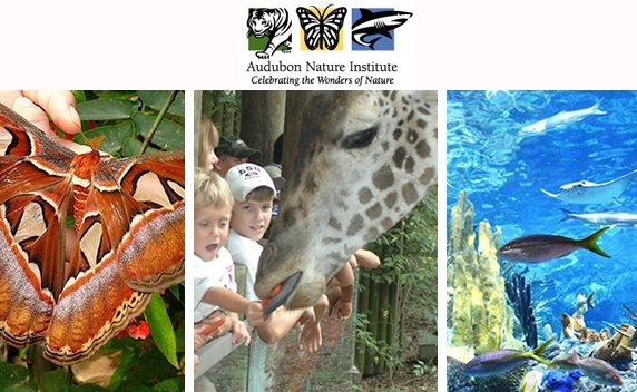 Audubon Zoo, Audubon Aquarium or Audubon Butterfly Garden and Insectarium Tickets!